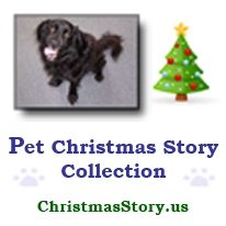 Pet Christmas Story Collection